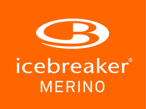 Icebreaker: Master Data Management
